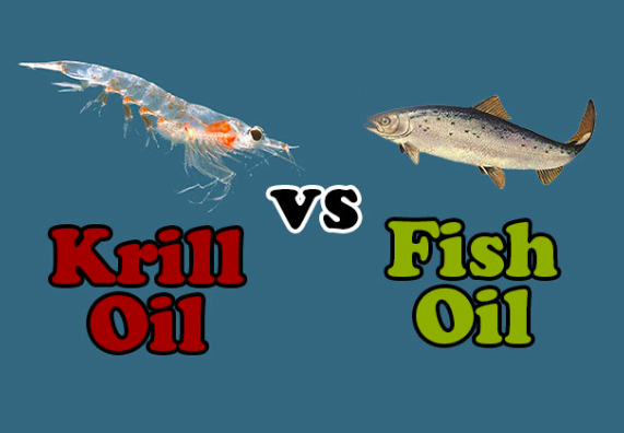Something smells fishy antarctic krill or fish oil emed for Krill or fish oil