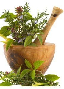 herbs-pageimg